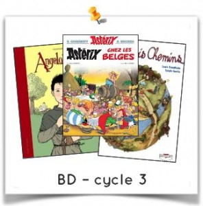 bd cycle 3