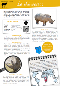 [Documentaire - pdf] Le rhinocéros