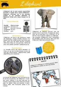 [Documentaire - pdf] L'éléphant