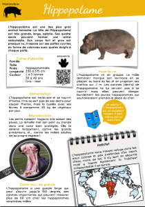 [Documentaires - pdf] L'hippopotame