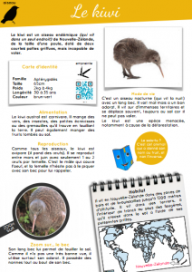 [Documentaire pdf] Le kiwi