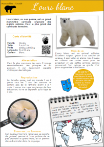 [Documentaire - pdf] L'ours blanc