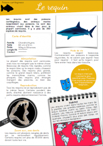 [Documentaire - pdf] Le requin