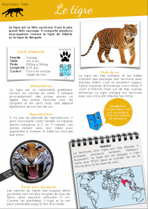 [Documentaire - pdf] Le tigre