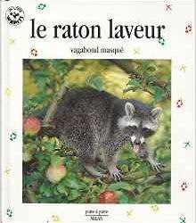 le-raton-laveur-vagabond-masque