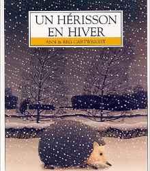 herisson-en-hiver-un