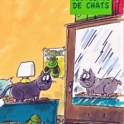 histoires-de-chats-miraucourt