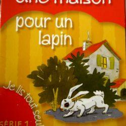 une-maison-pour-un-lapin