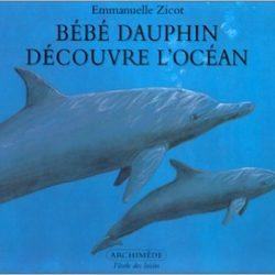 bebe-dauphin-decouvre-locean