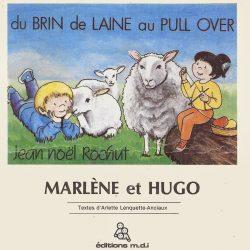 du-brin-de-laine-au-pull-over