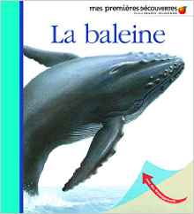 la-baleine