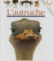 lautruche