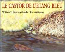 le-castor-de-letang-bleu