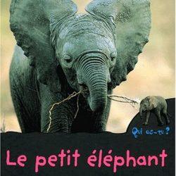 le-petit-elephant-qui-es-tu-montarde