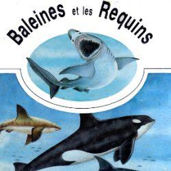 Baleines et requins
