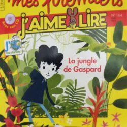 La jungle de Gaspard david jacqueline