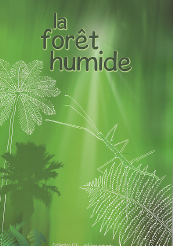 foret humide