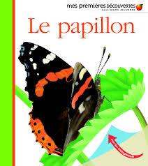 Le papillon delafosse
