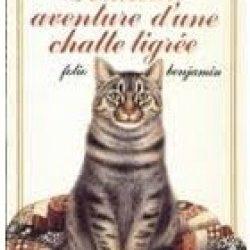 Périlleuse aventure d'une chatte tigrée