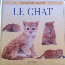 LE CHAT royston