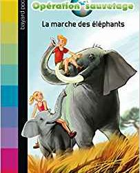 Opération sauvetagela marche des éléphants